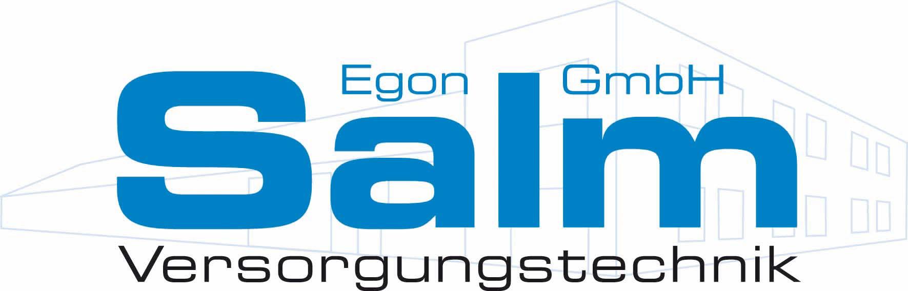Solvis Fachpartner Logo Salm